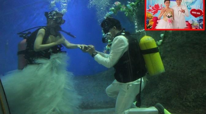 อันเดอร์วอเตอร์ เวิลด์ พัทยา จัดกิจกรรมแต่งงานในอุโมงค์ใต้น้ำสร้างความแปลกรับวันวาเลนไทน์