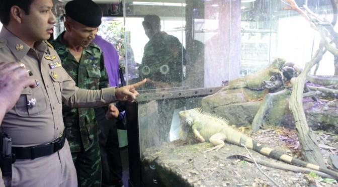 ฝ่ายปกครอง กรมป่าไม้ ทหาร บุกตรวจบริษัทอสังหาริมทรัพย์ เจอสัตว์แปลกหายากอื้อ