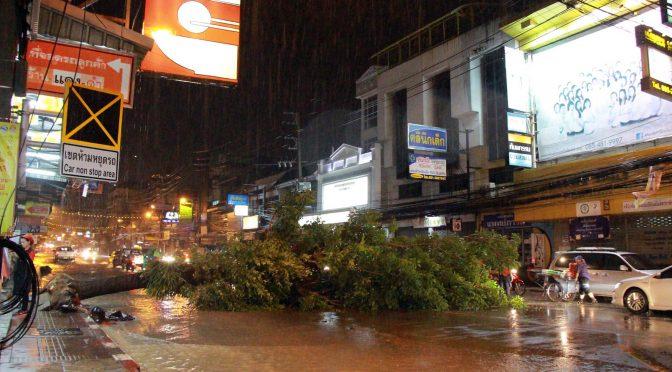 ฝนฟ้าคะนองลมกรรโชกแรง ทำต้นไม้ใหญ่อายุกว่า 30 ปี ล้มขวางถนน มีน้ำท่วมขังหลายจุด
